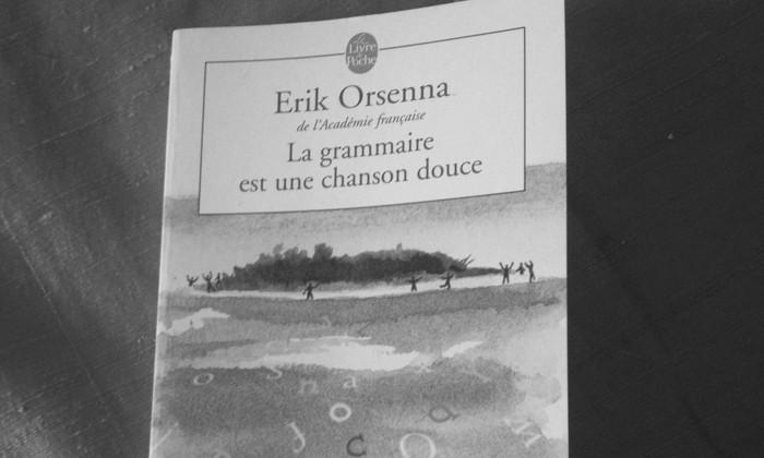 erik orsenna, La grammaire est une chanson douce